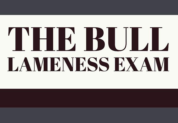 bulllameness