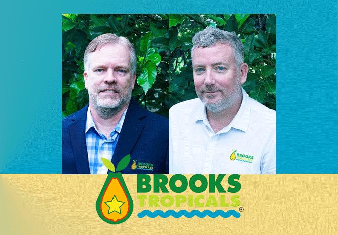 Brindle-Leifermann-Brooks_WEB