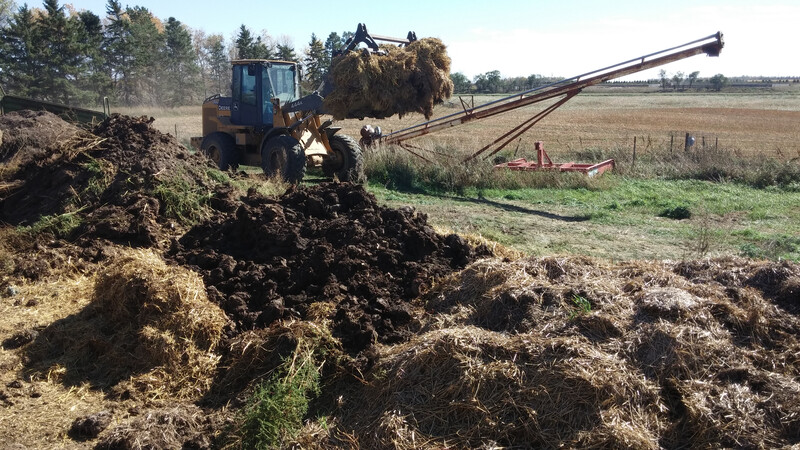 Dead Cattle Disposal Compost
