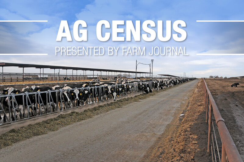 Ag Census Dairy