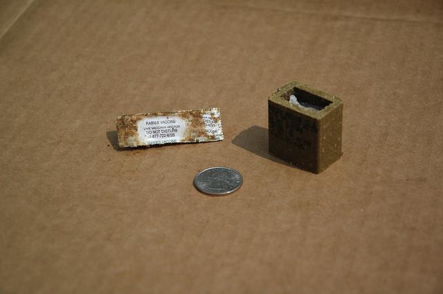 Rabies-Vaccine-bait-USDA