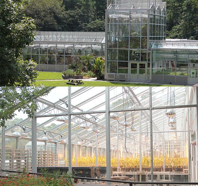 Verdesian Greenhouse Technology Advancement Development[1]