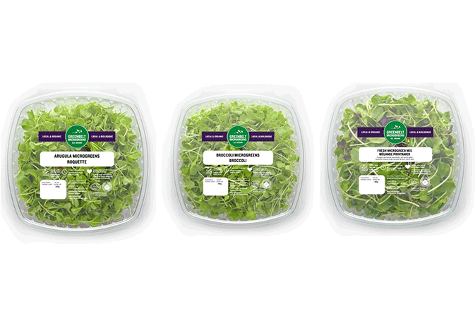 Greenbelt Greenhouse Ltd., Lynden, Ontario, has recalled 19 of its microgreen products in Canada due to possible Listeria contamination.