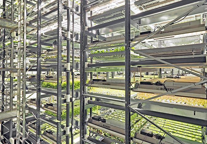 Bowery-Farming-web