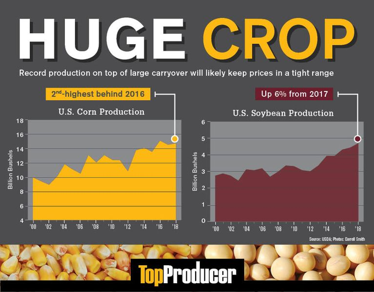 Top Producer: Huge Crop