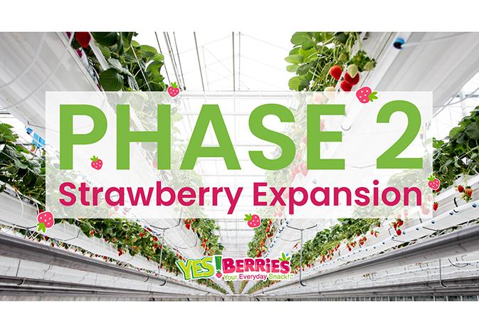 del-fresco-strawberry-expansion_WEB