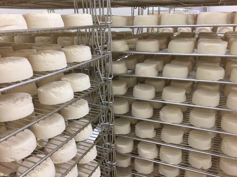 Vermont Creamery Cheese