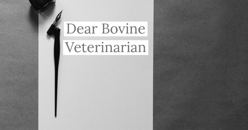 Dear Bovine Veterinarian