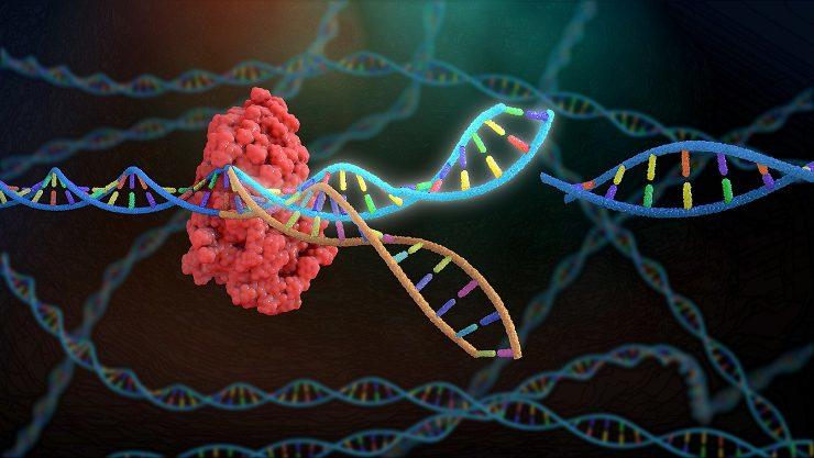 Gene-Editing-FDA