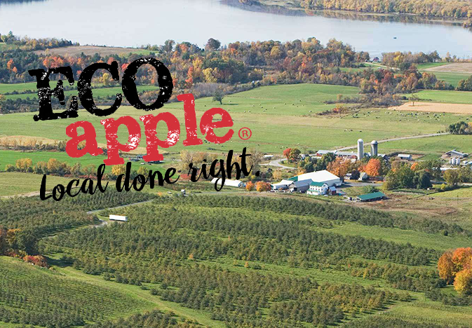 Eco-Apple-Champlain-Orchards