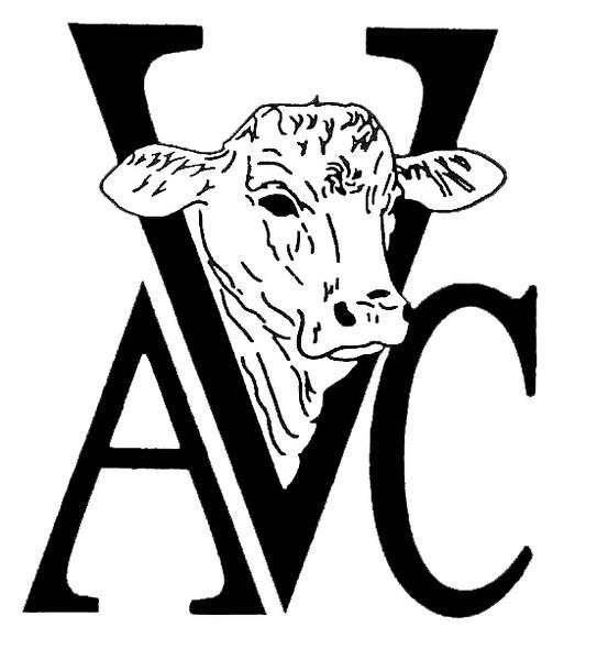 AVC Logo_5