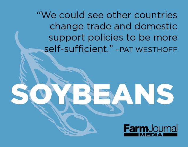 Soybeans Outlook
