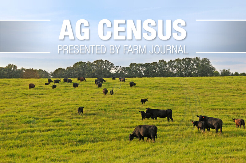 Ag Census Cattle Grazing