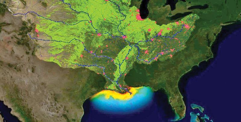 Gulf of Mexico hypoxic zone